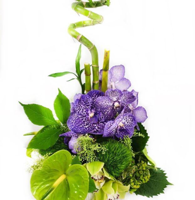 Purple green