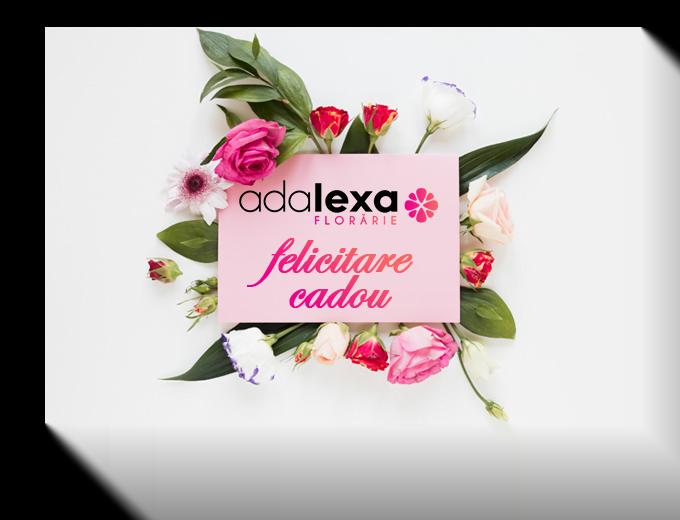 Untitled 2 - Acasă - Florarie Online Curtea de Arges