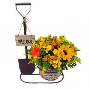 aranjament welcome 300x300 - Acasă - Florarie Online Curtea de Arges