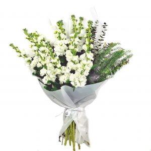 buchet mathiola alba 300x300 - Acasă - Florarie Online Curtea de Arges