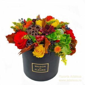 cutie de toamna cu logo web 300x300 - Acasă - Florarie Online Curtea de Arges