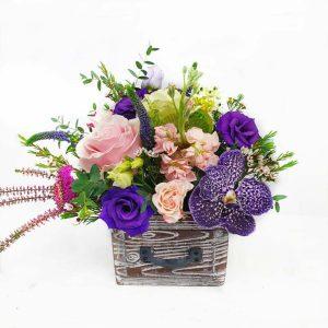 adalexa sertar cu vanda 300x300 - Acasă - Florarie Online Curtea de Arges